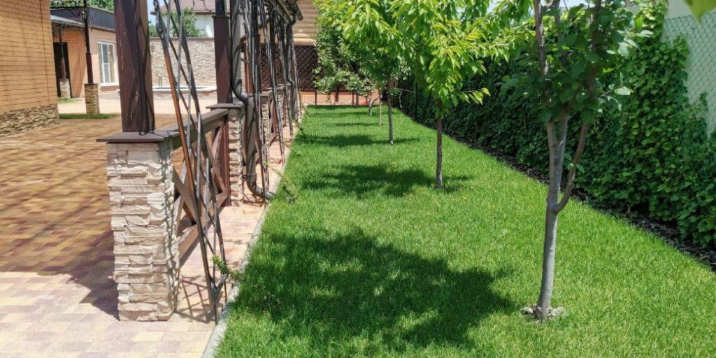 Рулонные газоны фото Лабинск
